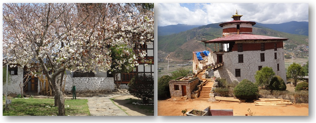 From the Travel Diaries: The Bhutan