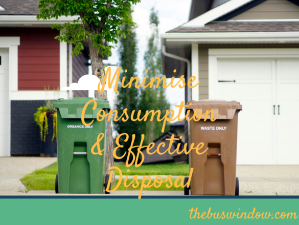 Minimise Consumption and Effective Disposal